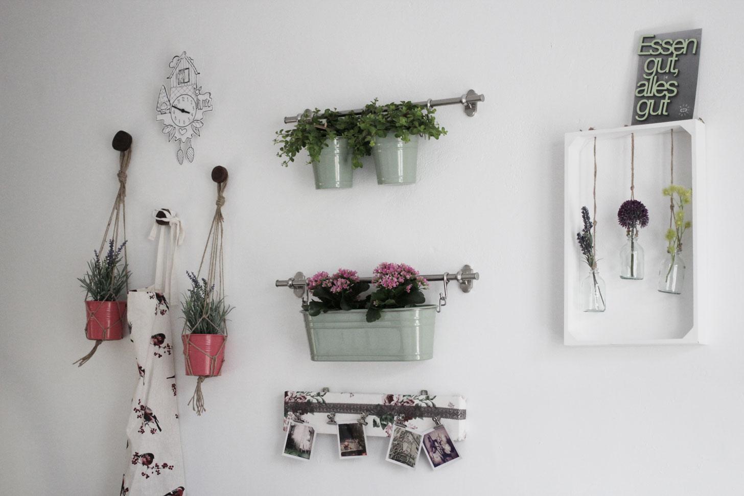 Meine pflanzenwand birdylicious - Diy pflanzenwand ...