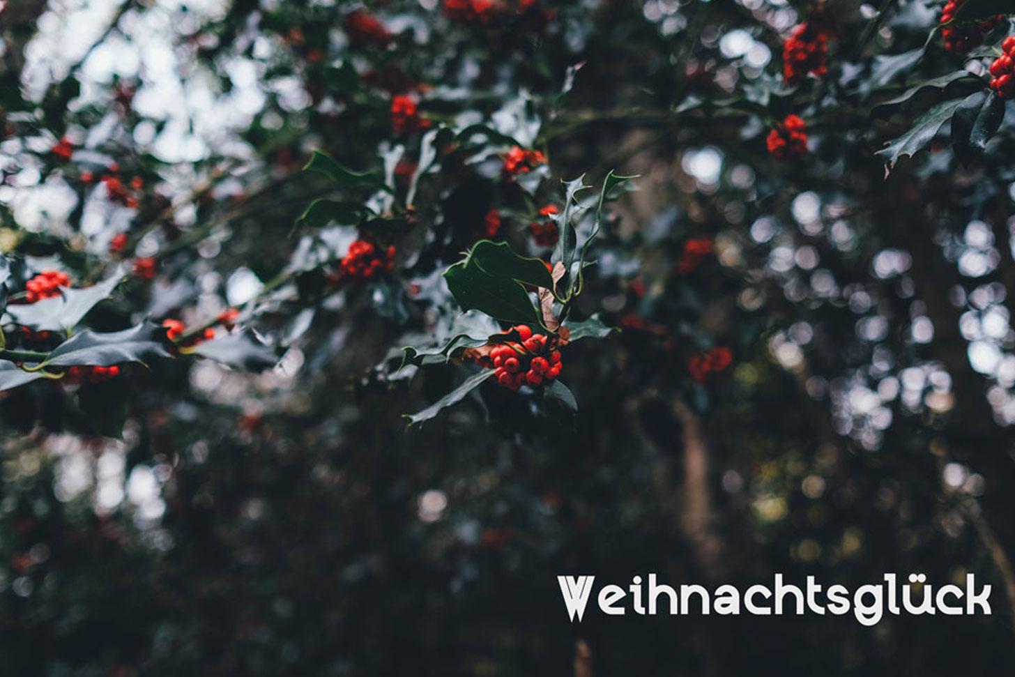 Weihnachtsglueck